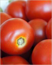 Слоёный салат с помидорами и сладким перцем «Осеннее настроение»на зиму